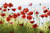 2011 Canvas Paintings - Mountain Poppies III