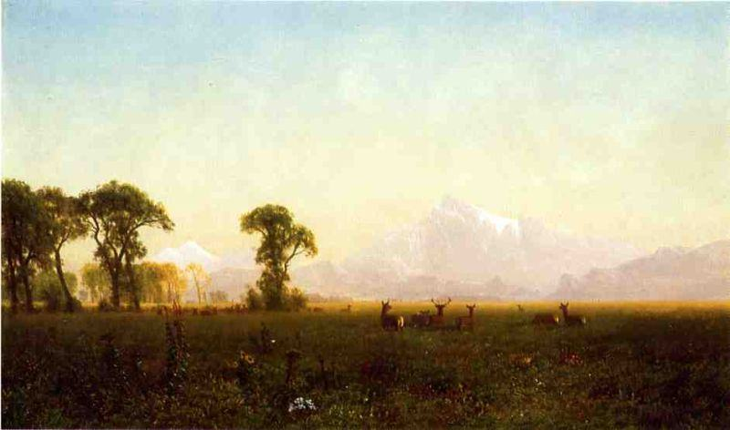 Albert Bierstadt Deer Grazing, Grand Tetons, Wyoming