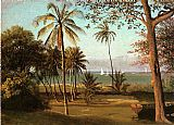 scene Canvas Paintings - Florida Scene