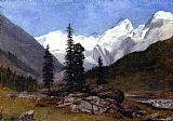Mountain Canvas Paintings - Rocky Mountain