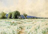 Alfred Thompson Bricher Wall Art - The Daisy Field
