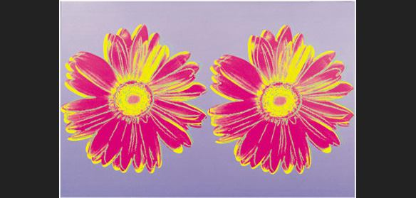 Andy Warhol Daisy Double Pink