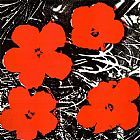 Flowers Red 1964