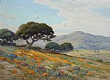Angel Espoy - California Lupines and Poppies