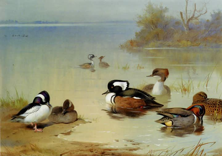 famous duck paintings page 2