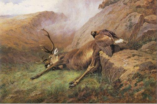 Archibald Thorburn Wall Art