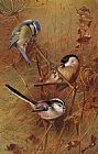 Archibald Thorburn Canvas Paintings - Autumn