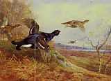 Archibald Thorburn - Blackgame in Flight