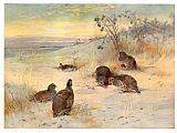 Archibald Thorburn Canvas Paintings - Close of a Winter's Day