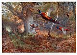Famous Wood Paintings - Pheasants Through the Oak Wood