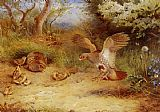 Famous Partridge Paintings - Summer Partridge and Chicks
