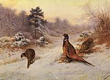 Archibald Thorburn Wall Art - Winter's Sunset