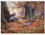 Famous Wood Paintings - Wood Pigeon on Beech Mast