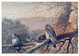 Archibald Thorburn Wall Art - Wood Pigeons in Beech Tree