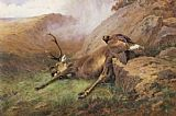 Archibald Thorburn Famous Paintings - the lost stag