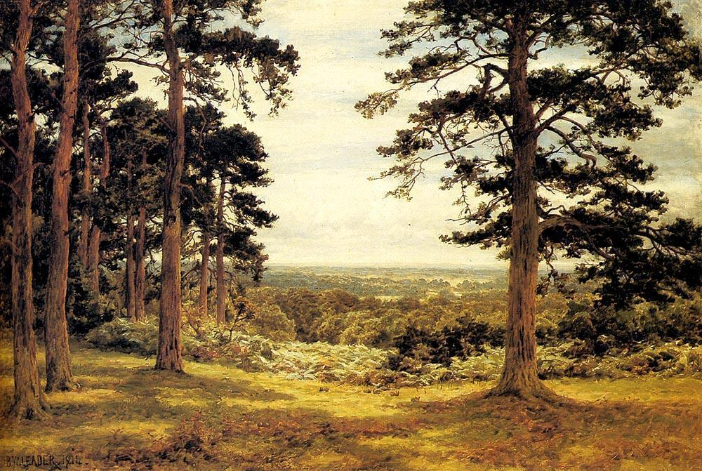 Benjamin Williams Leader A Peep Through The Pines