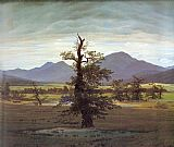 Landscape with Solitary Tree