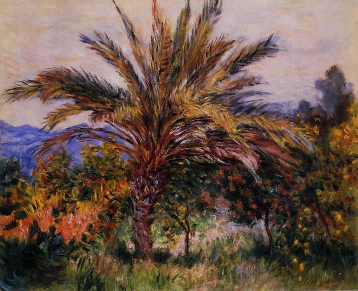 Claude Monet A Palm Tree at Bordighera