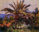 Tree Canvas Paintings - A Palm Tree at Bordighera