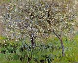 Trees Canvas Paintings - Apple Trees in Bloom at Giverny