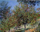 Trees Canvas Paintings - Apple Trees on the Chantemesle Hill