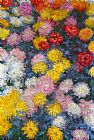 sant Canvas Paintings - Chrysanthemums 4