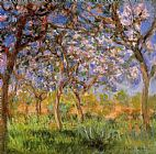 Claude Monet Giverny in Springtime painting