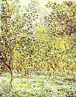 Trees Canvas Paintings - Lemon-Trees Bordighera