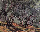 Trees Canvas Paintings - Olive Trees in Bordighera