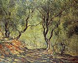 Tree Canvas Paintings - The Olive Tree Wood in the Moreno Garden