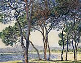 Trees Canvas Paintings - Trees by the Seashore at Antibes
