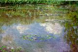 Lilies Canvas Paintings - Water Lilies 1903