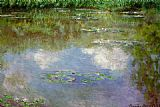 Lilies Canvas Paintings - Water Lilies The Clouds