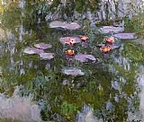 Water-Lilies 23