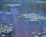Water-Lilies 31