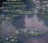 Water-Lilies 36