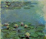 Water-Lilies 43