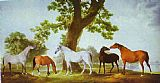 George Stubbs Mares by an Oak-Tree painting