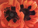 Georgia O'Keeffe Oriental Poppies 1928 painting