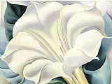 Georgia O'Keeffe White Flower painting