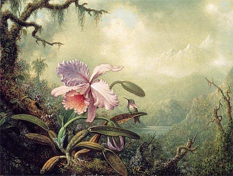 Famous Orchid Paintings page 2
