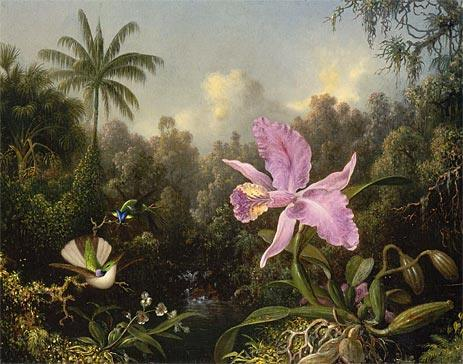 Martin Johnson Heade Orchid and Two Hummingbirds