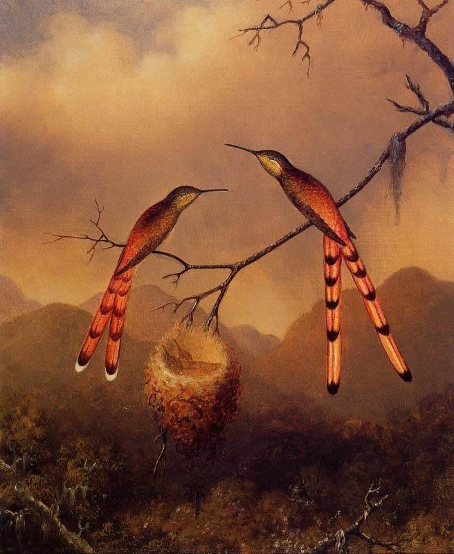 Martin Johnson Heade Two Hummingbirds with Their Young