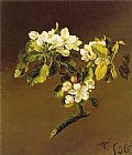 A Spray of Apple Blossoms 1870