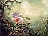 Famous Orchid Paintings - Heliodore's Woodstar and a Pink Orchid
