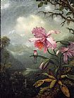 Famous Orchid Paintings - Hummingbird Perched on an Orchid Plant