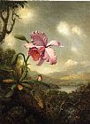 Famous Orchid Paintings - Hummingbird and Orchid, Sun Breaking Through the Clouds