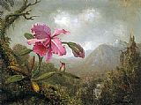 Mountain Canvas Paintings - Orchid and Hummingbird near Mountain Waterfall