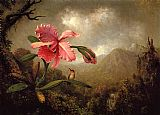 Mountain Canvas Paintings - Orchid and Hummingbird near a Mountain Waterfall