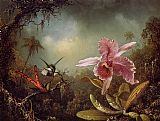 Famous Orchid Paintings - Orchid with Two Hummingbirds